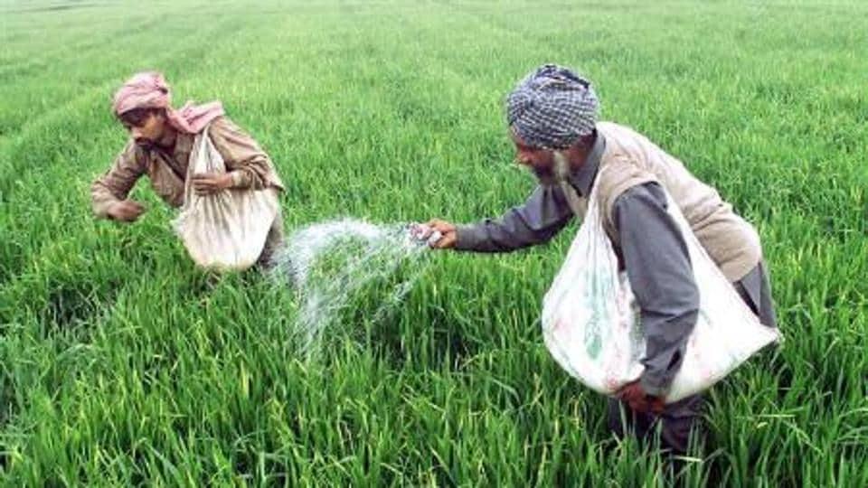Fertiliser,prices,subsidy