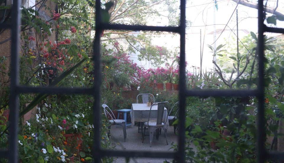 Discover Delhi Secret Terrace Garden Of A Closet Forager