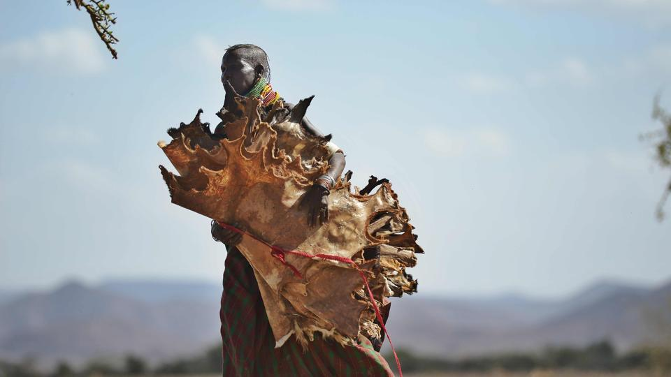 A Turkana woman carries dried skinned from goats she has lost to a biting drought that has ravaged livestock population in nothern Kenya near Lokitaung in Turkana county . (TONY KARUMBA / AFP)