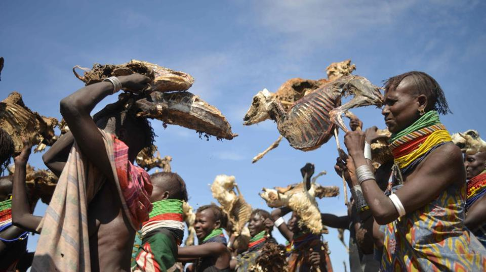 Turkana women carry dead animals they lost due to a biting drought that has ravaged livestock population in nothern Kenya near Lokitaung in Turkana. (TONY KARUMBA / AFP)