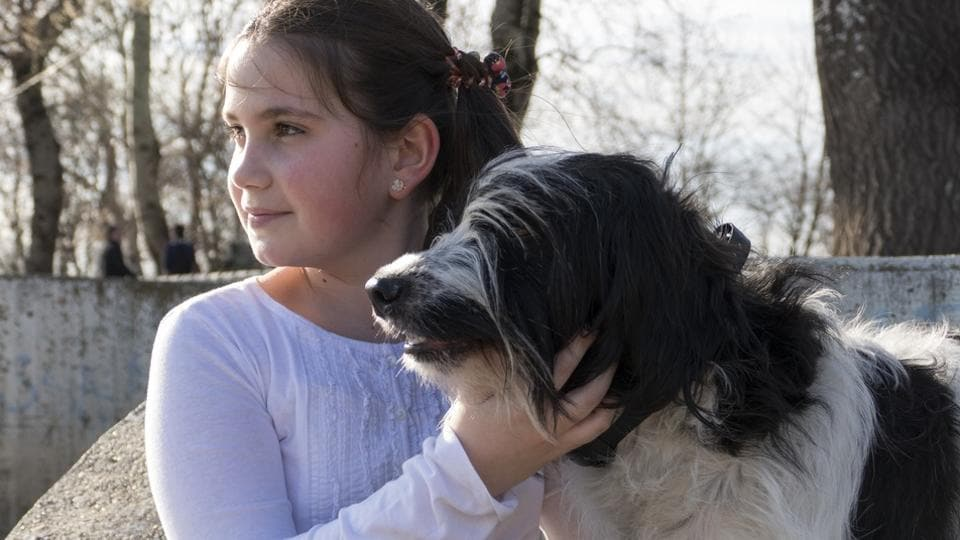 Previous studies have shown that children who grow up with dogs have lower rates of asthma.