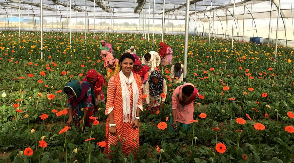 A thorough research, a supportive family and a blend of technology and marketing was what it took for this 26-year-old, Vamika Bahety, to start floriculture on her land, which has garnered her a Rs 1.5-crore turnover in just over a year