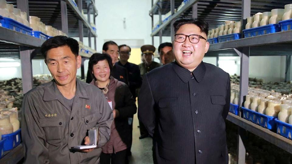North Korea considers Syria a key ally. Its leader Kim Jong Un and Syrian leader Bashar al-Assad have exchanged pledges of friendship and cooperation.