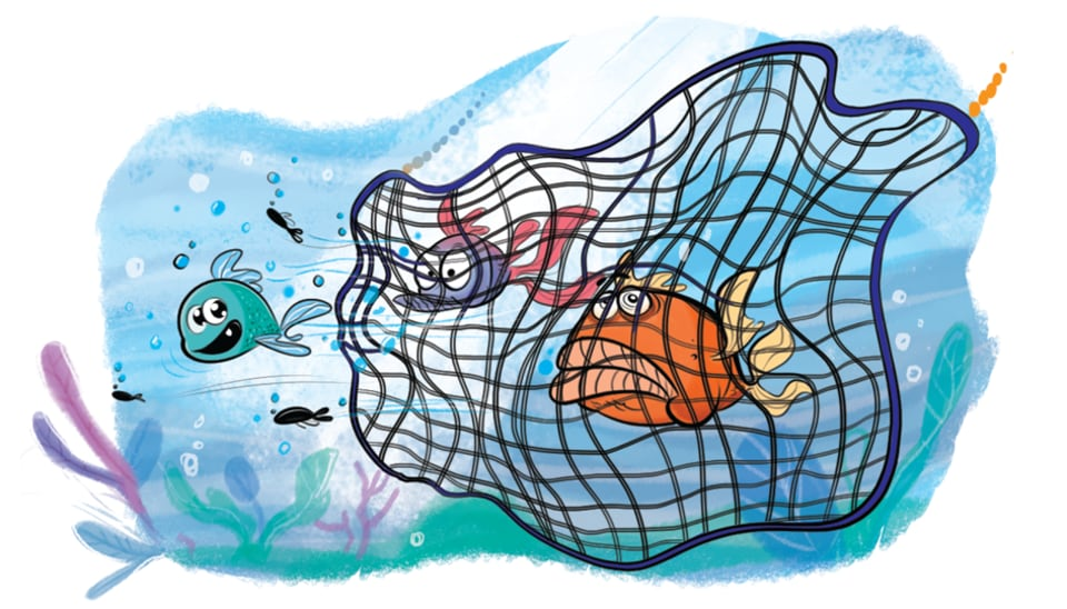 On an average catch of 18 kilogram, it is estimated that the square mesh nets allow over three kilogram of juvenile fish to escape, making marine fishing sustainable.