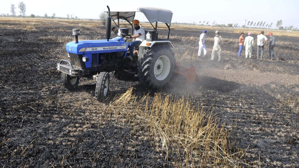 The fire occurred due to short circuit in loose electric wire connections passing over the standing wheat crop. (Bharat Bhushan /HT)