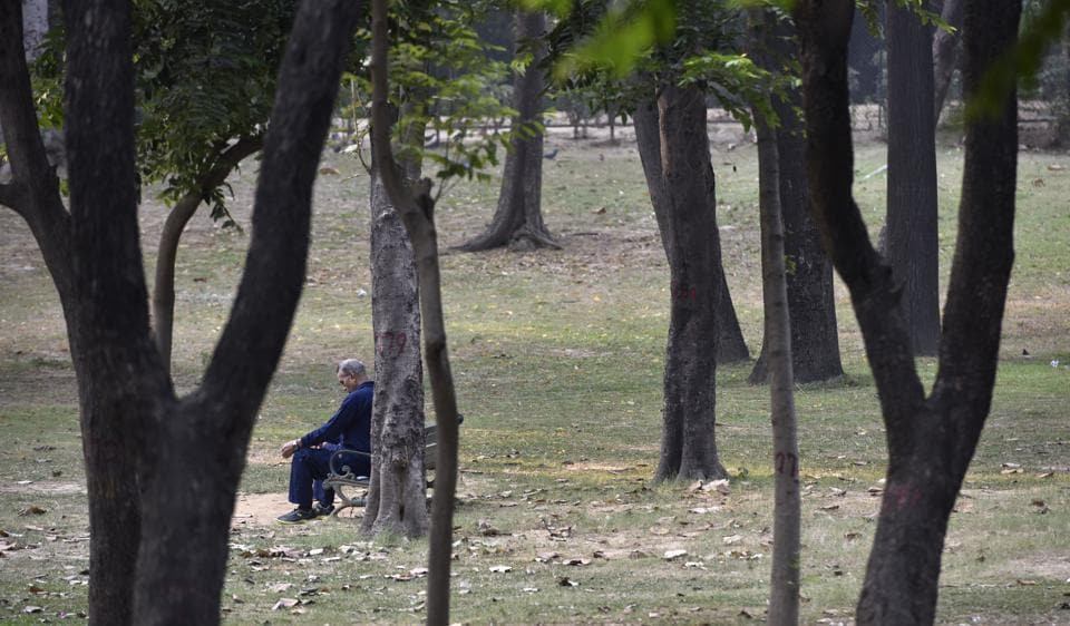 Many neighbourhood parks in Delhi have become a den of addicts and alcoholics, who take refuge in unlit patches.