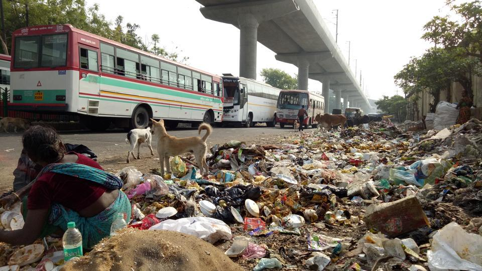 Heaps of garbage occupying nearly half the road in Mawaiyya, Lucknow.