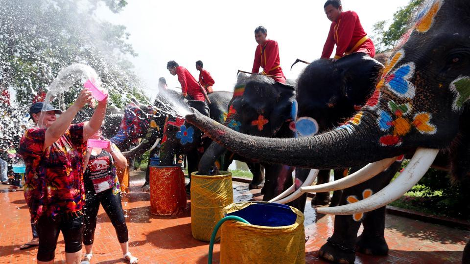 Elephants spraying water at tourists on the street. (Chaiwat Subprasom  / Reuters)