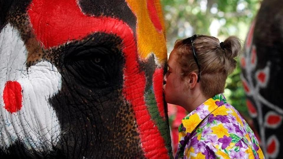 A volunteer kisses an elephant in celebration during the Songkran water festival. (Chaiwat Subprasom  / Reuters)