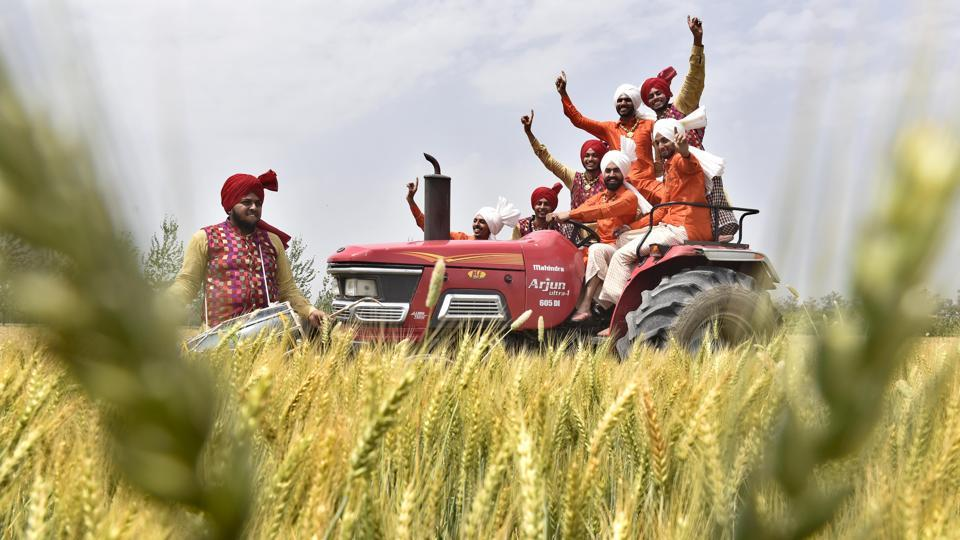 Students of Khalsa College performing traditional and Punjabi folk dance celebrating the coming harvest season in Amritsar.  (Gurpreet Singh/ht photo)