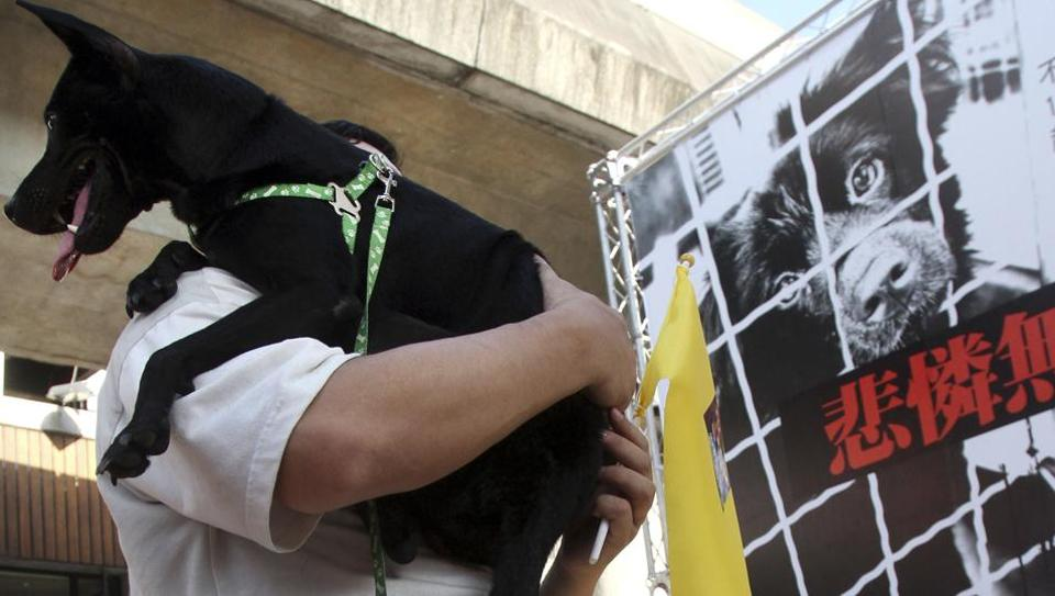 A Taiwanese man holds his dog during a gathering to demand establishment of a government department to protect dogs and cats from their owners who abused or dumped the animals in Taipei.