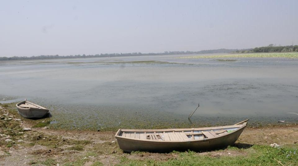 A drying up Sukhna Lake bed on Friday