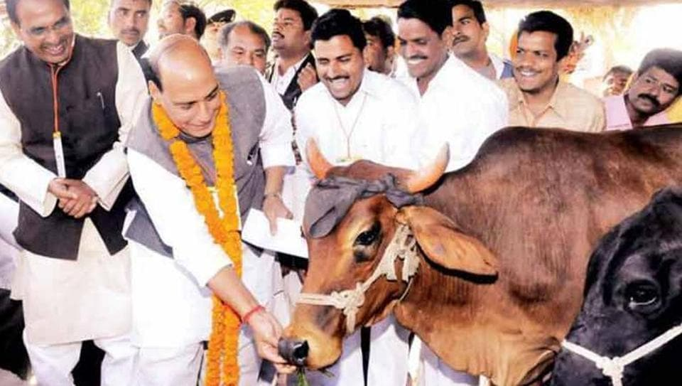 The Vishwa Hindu Parishad on Sunday said that it is capable of imposing a total ban on cow slaughter and consumption of beef in Goa in next couple of years, without the government's help.