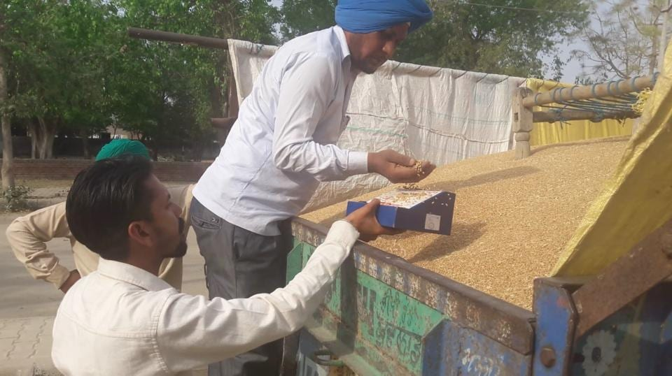 The moisture content in the crop being measured at the gate of the grain market in Mansa.