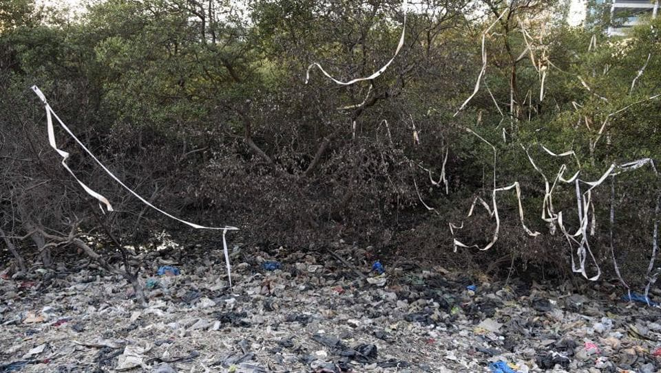 Environmentalists said mangroves in Mumbai are the most sought after area for real-estate development.