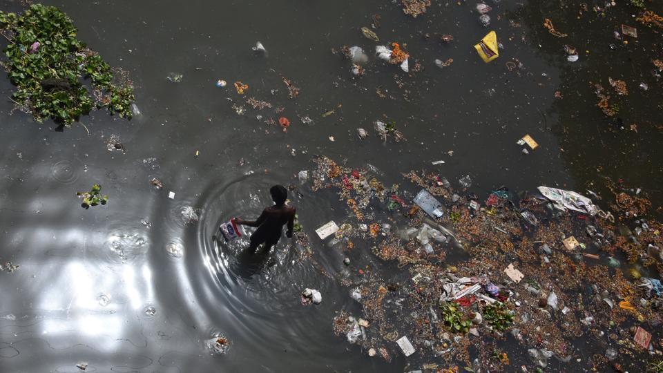 Yamuna floodplain,Yamuna river,Delhi