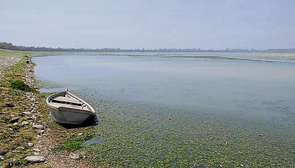A drying up Sukhna Lake.