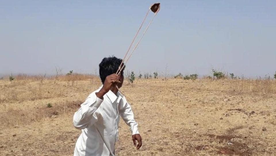 Madhya Pradesh,Gofan,MP tribals