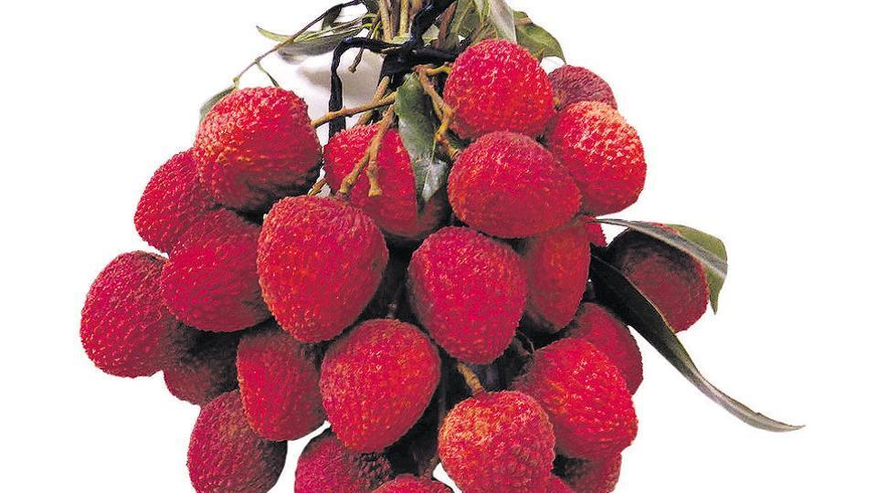 Adverse weather conditions presage a deficient crop of the famed 'shahi' litchi of Muzaffarpur in Bihar.