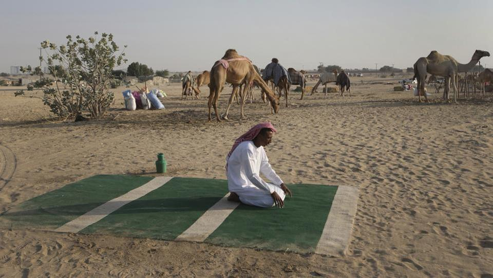 A Sudanese camel keeper, performs his afternoon prayers at a farm for female racing camels, in Dubai. (Kamran Jebreili / AP)
