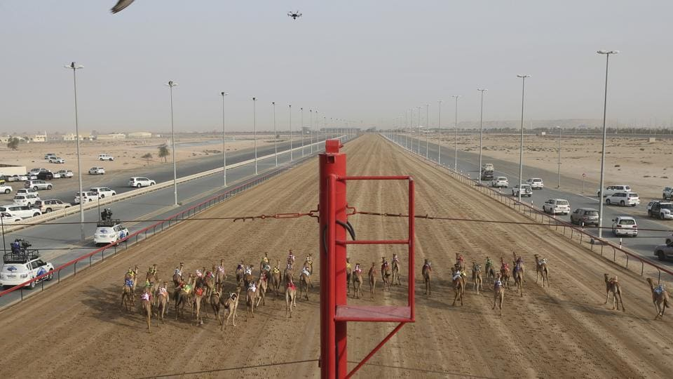 Camel owners in their SUVs follow their camels as a race starts at the Al Marmoom Camel Racetrack, in al-Lisaili about 40 km (25 miles) southeast of Duba. (Kamran Jebreili / AP)