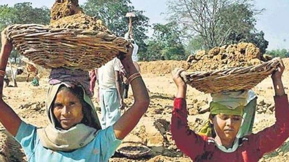 Union rural development secretary Amarjeet Sinha said job cards had been cancelled on the basis of a househouse survey. But activists say genuine beneficiaries were also struck off in the process in violation of MGNREGA regulations.