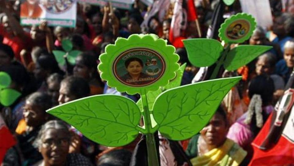 The two-leaves symbol of the AIADMK party.