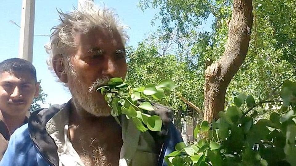 Mehmood Butt, 50, who hails from Gujranwala district in Punjab province, started surviving on leaves at the age of 25.