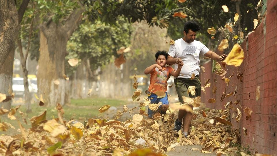 The dust storm catches a kid by surprise as the duo try to navigate through  a maze of dust and dry leaves in Chandigarh on Friday.  (Ravi Kumar/HT)