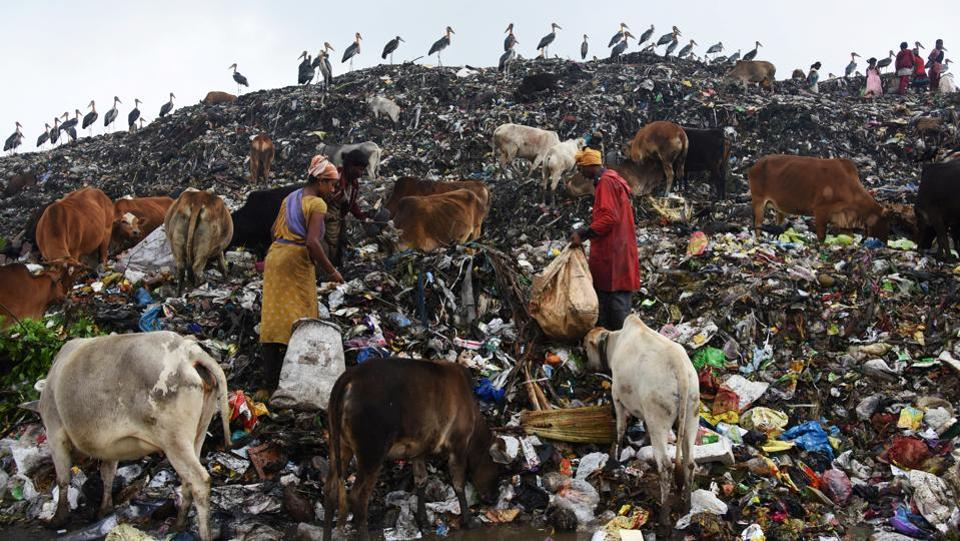 Scavengers collect recyclable materials at a garbage dump site on the occasion of Earth Day, in Guwahati. (Anuwar Hazarika/REUTERS)