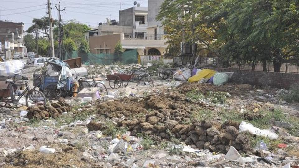 The primary duty of MC is to maintain roads, parks and sanitation in the city.
