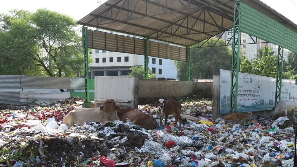 A garbage dump near Phase 11, SAS Nagar. All residential areas, offices, institutions will be covered under the project.