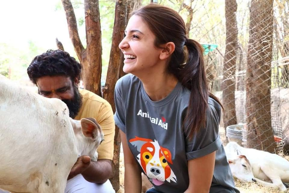 Anushka Sharma, who is a known animal lover, shared her experience on her Instagram page.