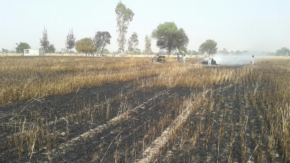 In last one month, more than 20 incidents of fire have been reported in the district, most of them from agricultural fields.
