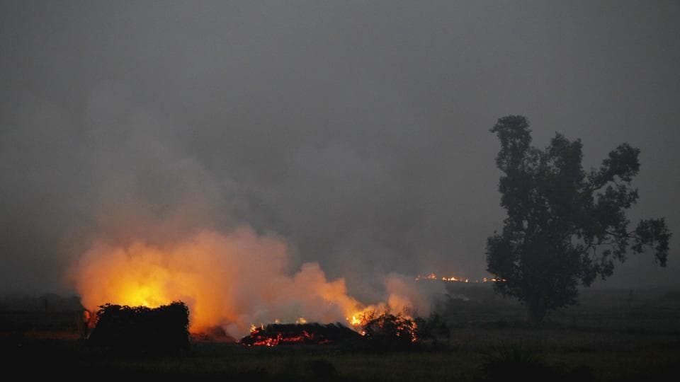 Environmentalists had cited burning of crackers during Diwali and burning of residual harvest by farmers in Haryana, Uttar Pradesh and Punjab for poor air quality.