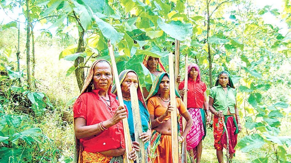 Authorities at RSP informed the Odisha government that employment had been offered to 6,000 displaced people. But when the list was checked, only 3,000 were found to have been employed.
