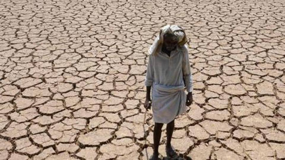 Representative Image: An Indian farmer poses in his dried up cotton field at Chandampet Mandal in Nalgonda east of Hyderabad on April 25, 2016, in the southern Indian state of Telangana.