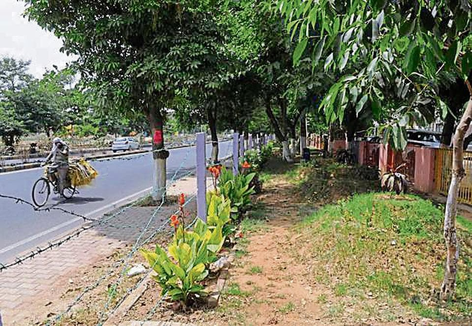 The RWA had started a two-month development programme for residents, in which they planted trees and flowers.