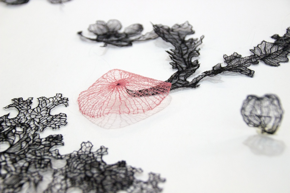 Memory, nature, science and fantasy come together in the lace-like fragments that make up Sumakshi Singh's art.