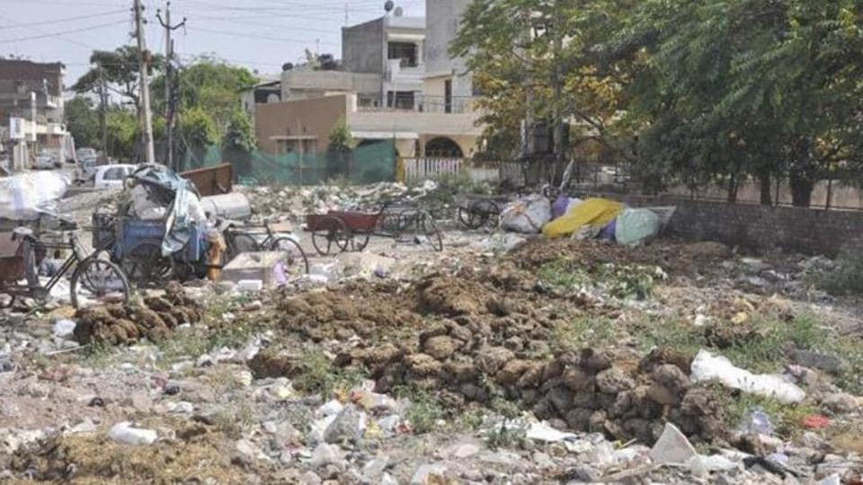 Swachh Survekshan survey,Chandigarh,SAS Nagar