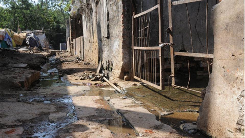 Illegal slaughterhouses