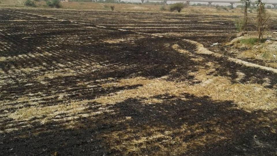 open burning,Noida,farmers booked