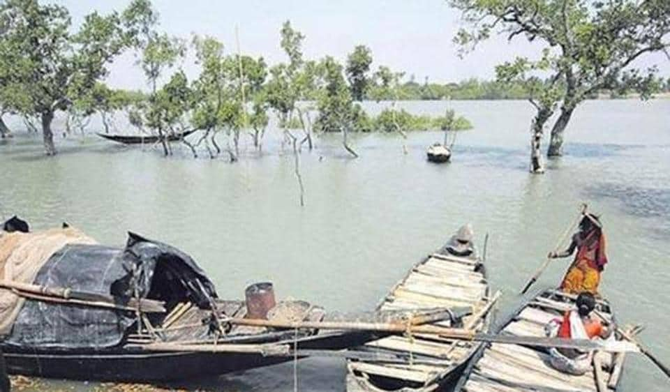 The Rampal power plant site is located in close proximity to the Sundarbans, a UNESCO world heritage site.