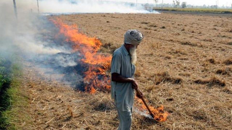 stubble burning,Punjab Remote Sensing Centre,Punjab Pollution Control Board