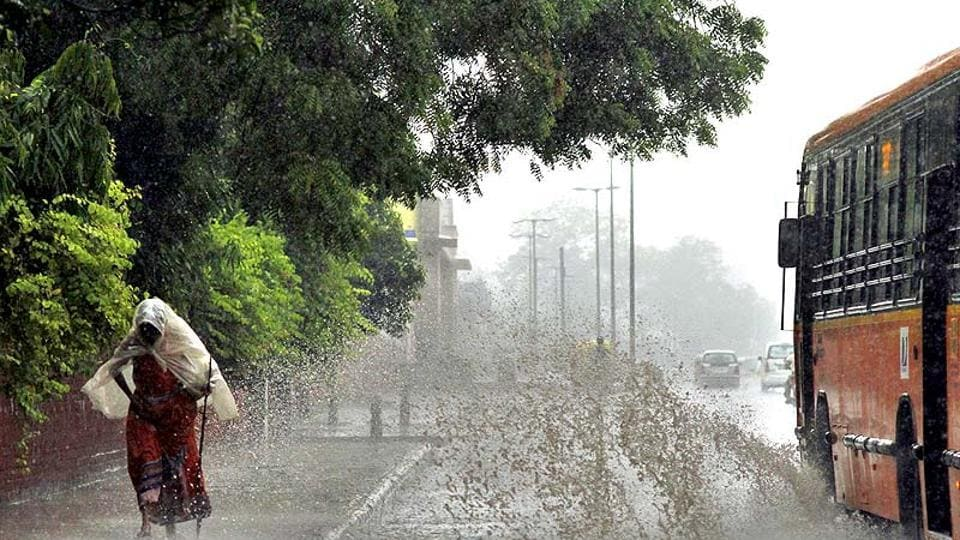 Hyderabad,Telangana,Heavy rainfall