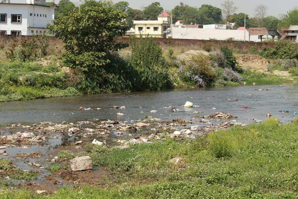 HT had reported that wild animals were drinking polluted water of Suswa river passing through the Rajaji reserve, home to more than 15 tigers.