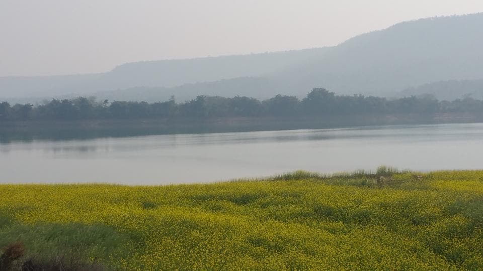 The banks of Ken river will be submerged for the setting up of a reservoir from which water will be diverted to Betwa basin in Madhya Pradesh.
