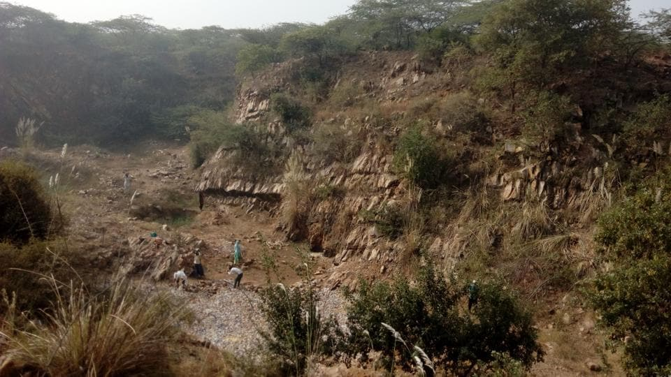 This year, the forest officials dug five new water pits in Rojka Gujjar, near the Bandhwari (Gurgaon-Faridabad Road) and in Mandawar forest areas