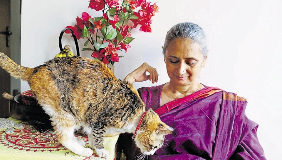 Thumri singer Vidya Rao with her aging cat 'Sufi'. Rao named the cat after a Sufi shrine where she had found her one monsoon afternoon in 1999.