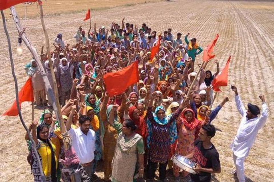 Dalits waving red flags after getting rights to the common reserved land at Ubhawal village on Tuesday.